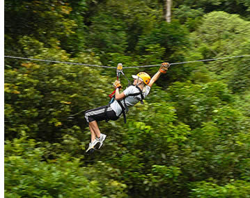 The zipline canopy tour gives you a unique perspective of the cloud forest and an adrenaline rush